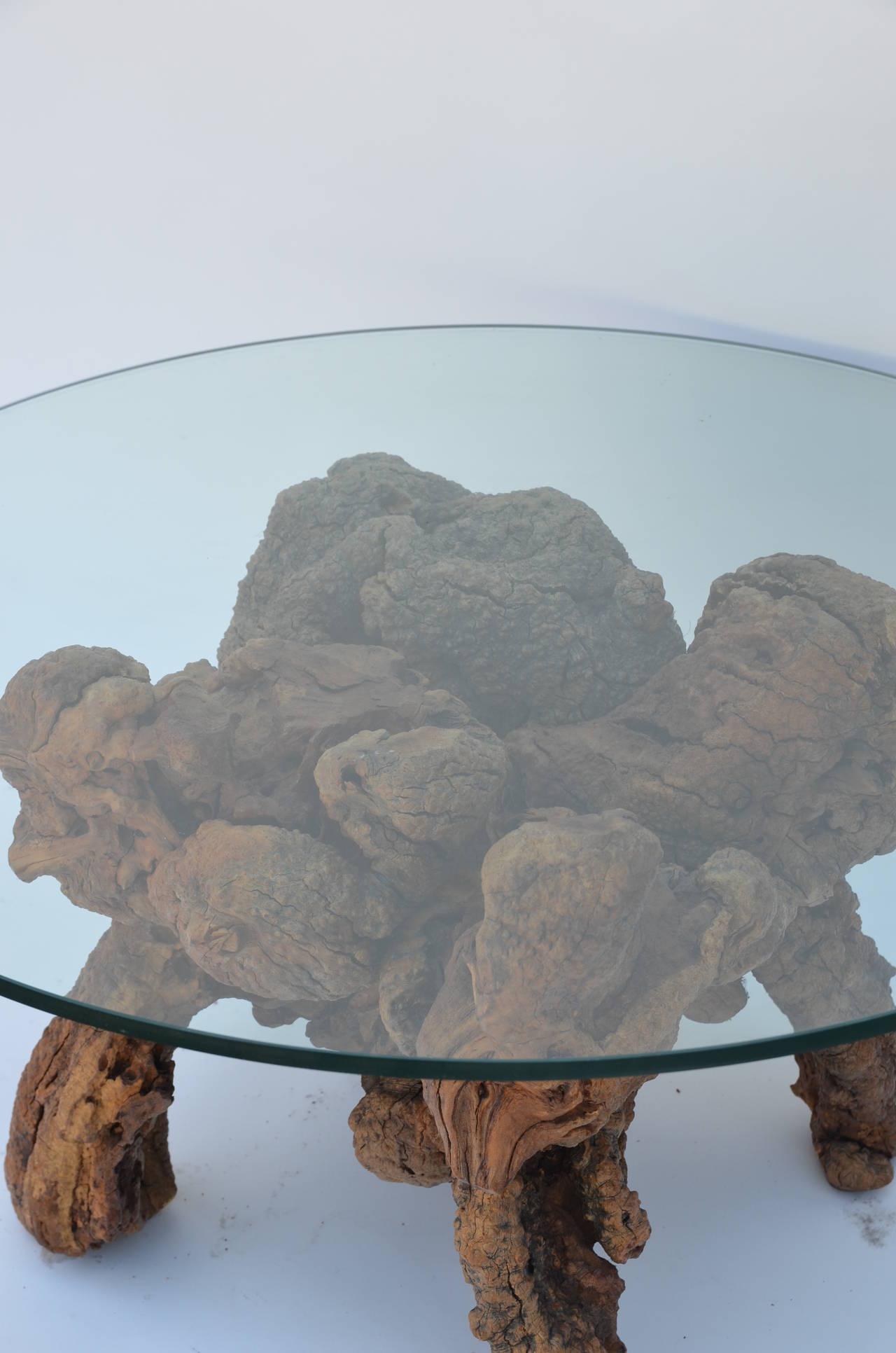 Organic Modern Quadripod Bog Wood and Glass Coffee Table For Sale 1