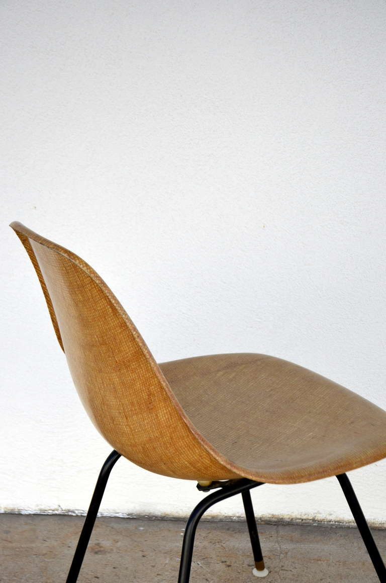 Mid-20th Century Single Fiberglass Encasted Fabric Mesh Chair by Eames for Herman Miller For Sale