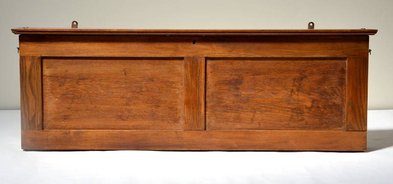 Charmant American Craftsman Rare Antique Classroom Pull Down Map Cabinet In Oak Case  For Sale