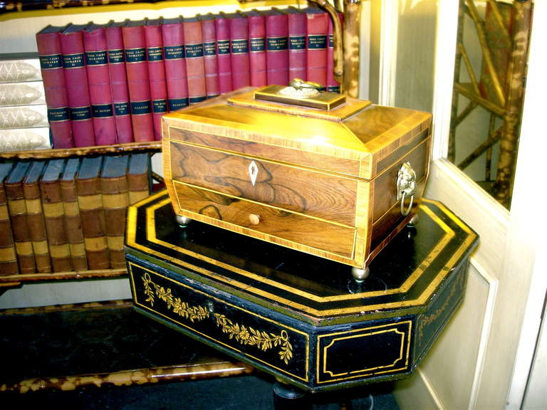 Handsome Regency rosewood tea caddy with drawer.