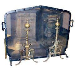 English Hand-Forged Iron Fire Screen with Pair of Bronze Andirons