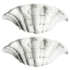One Pair Shell Form Sconces after Serge Roche