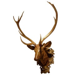 Exceptional Black Forest Carved Wood Deer Head With Antler Mount