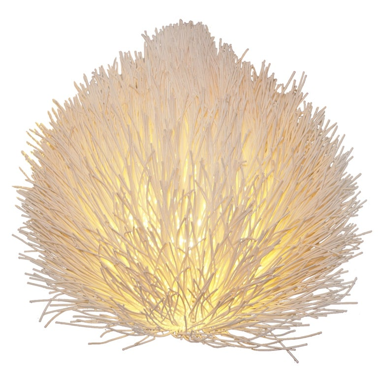 Organic Reed Accent Lamp 1