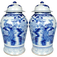 Pair of Chinese Blue and White Phoenix and Peony Ginger Jars