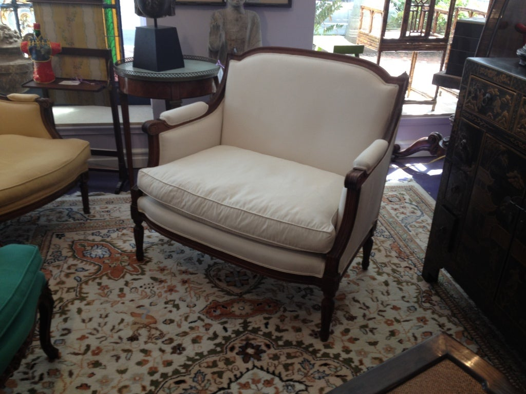 Down French Louis XVI Style Bergere For Sale
