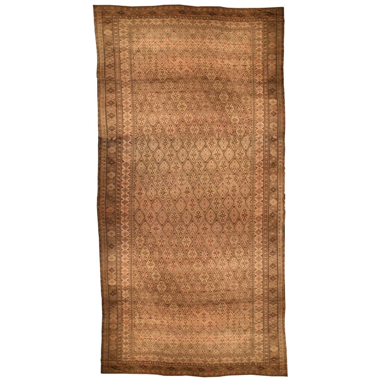 Antique Afghan Rugs: Antique Afghan Bashir Rug For Sale At 1stdibs