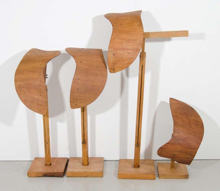 Siegel Wooden Display Form 7