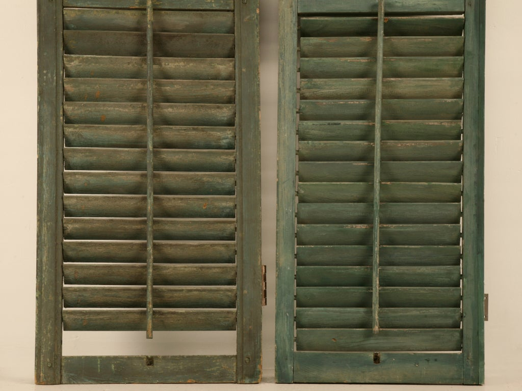 Great Pair of Antique English Original Paint Plantation Shutters 10