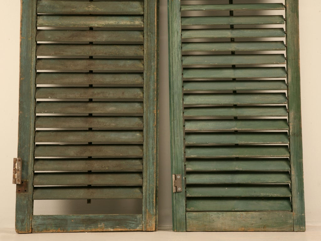 Great Pair of Antique English Original Paint Plantation Shutters 5