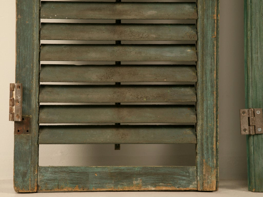 Great Pair of Antique English Original Paint Plantation Shutters 6