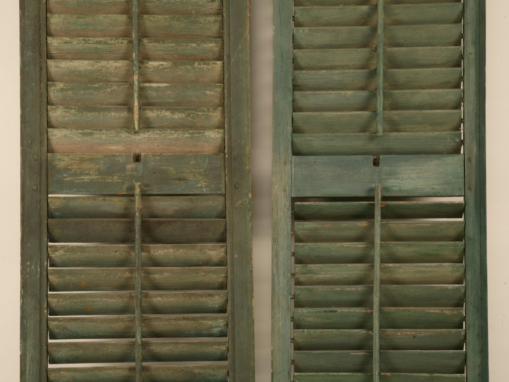 Great Pair of Antique English Original Paint Plantation Shutters 9