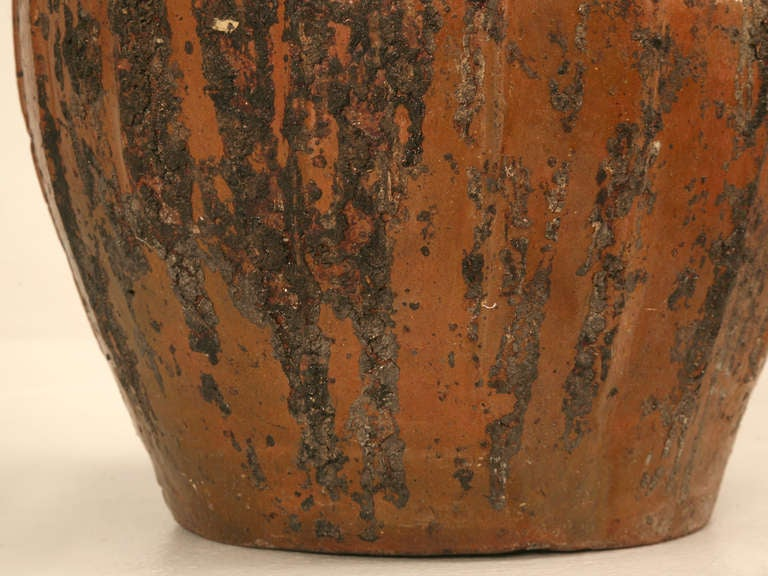 Rustic Early 1800's Handmade Antique French Walnut Oil Jug 10