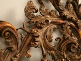 Exquisite Antq. Italian Carved & Gilded Organic Relief/Headboard thumbnail 4