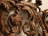 Exquisite Antq. Italian Carved & Gilded Organic Relief/Headboard thumbnail 6