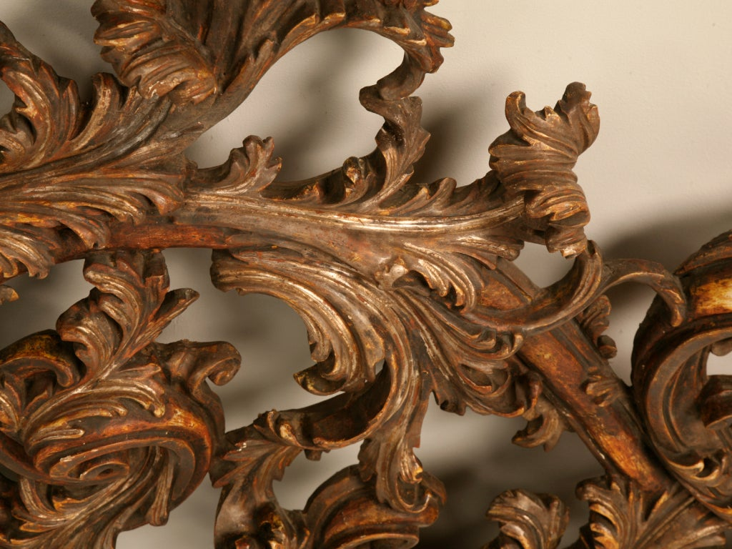 Exquisite Antq. Italian Carved & Gilded Organic Relief/Headboard For Sale 3
