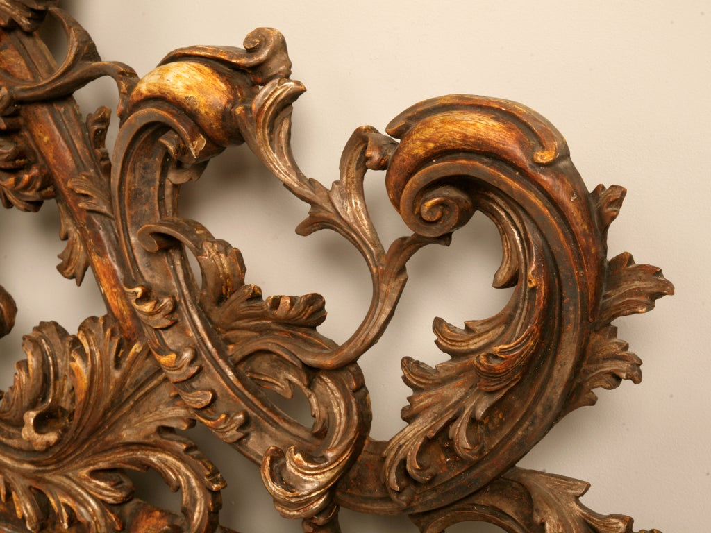 Exquisite Antq. Italian Carved & Gilded Organic Relief/Headboard For Sale 4