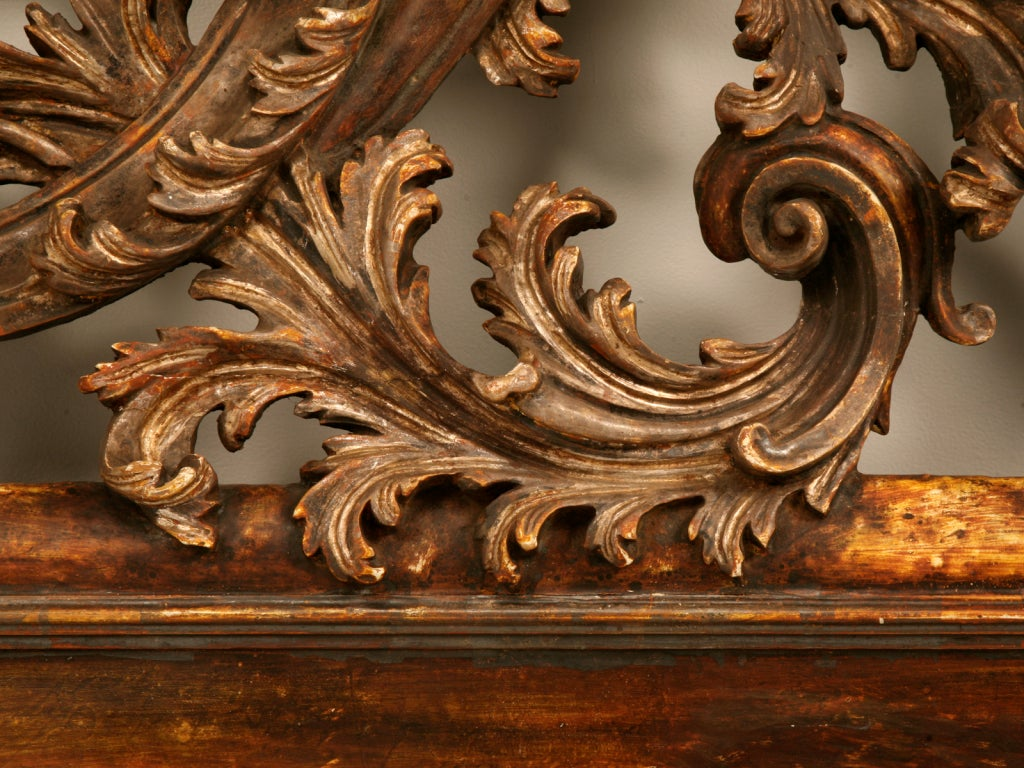 Exquisite Antq. Italian Carved & Gilded Organic Relief/Headboard image 9