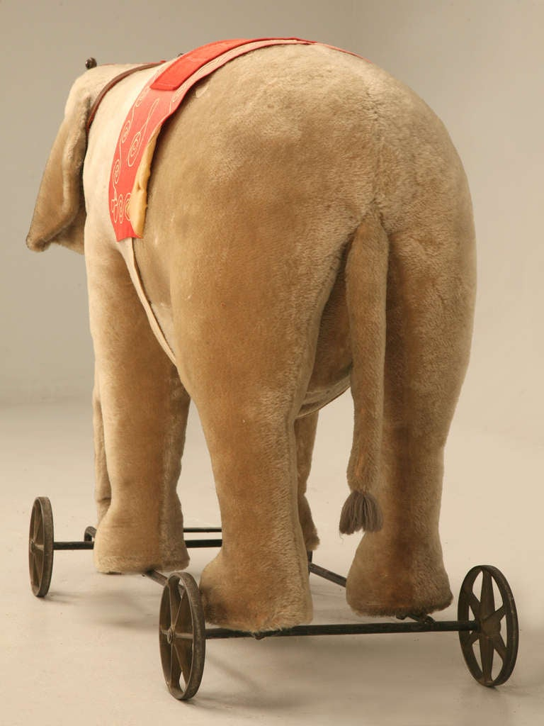 "Original Antique ""Steiff"" Mohair Elephant Pull Toy (early 20th Century) 3"