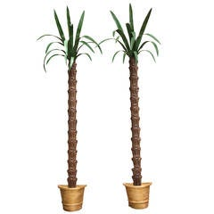 Pair of American Tole Wall-Mounted Palm Trees
