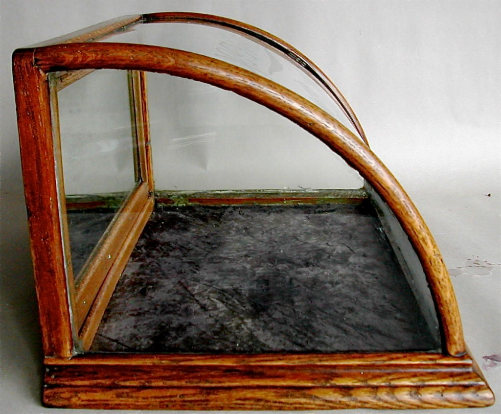 Curved Glass Front Counter Display Case By J Riswick At