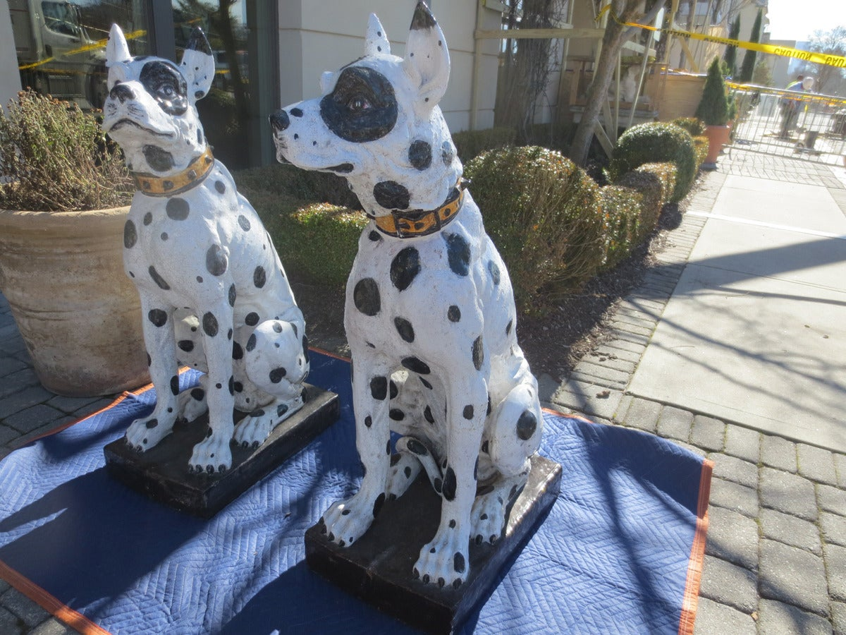 Unbelievable Large Pair of 20th Century Italian Ceramic Glazed Great Dane Dogs In Good Condition For Sale In Atlanta, GA