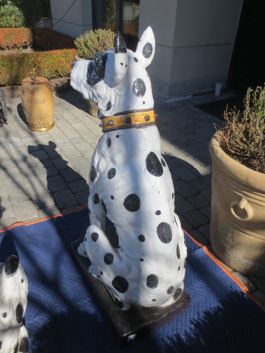 Unbelievable Large Pair of 20th Century Italian Ceramic Glazed Great Dane Dogs For Sale 5