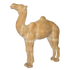 Large Carved camel