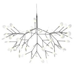 Heracleum Lamp by Moooi
