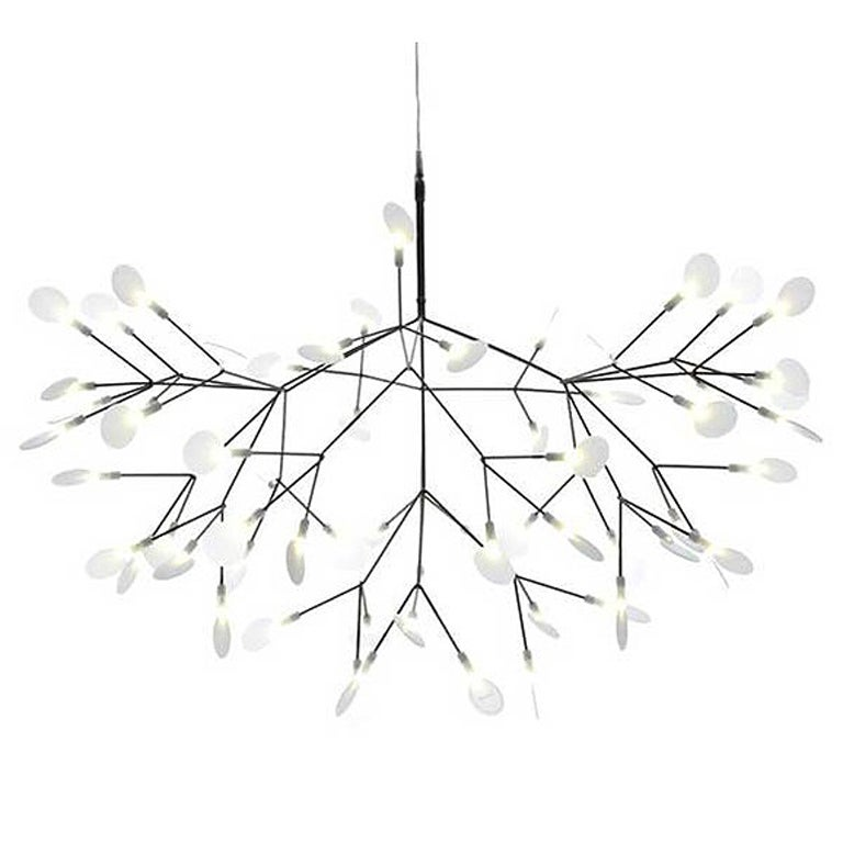 heracleum lamp by moooi for sale at 1stdibs