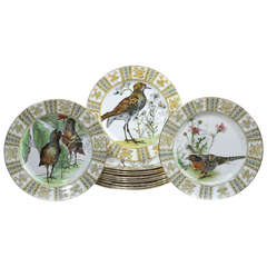 Set of 12 Royal Doulton Dinner Plates with Hand Colored Birds