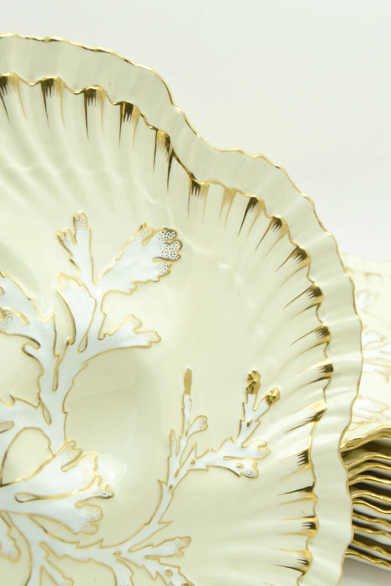 Set of 12 19th c. Brownfield's for Tiffany Ivory & Gold Coral Reef Oyster Plates For Sale 1