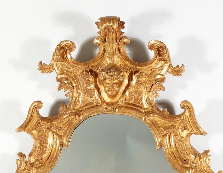 Italian A Fine RococoI Giltwood Mirror, Italy For Sale