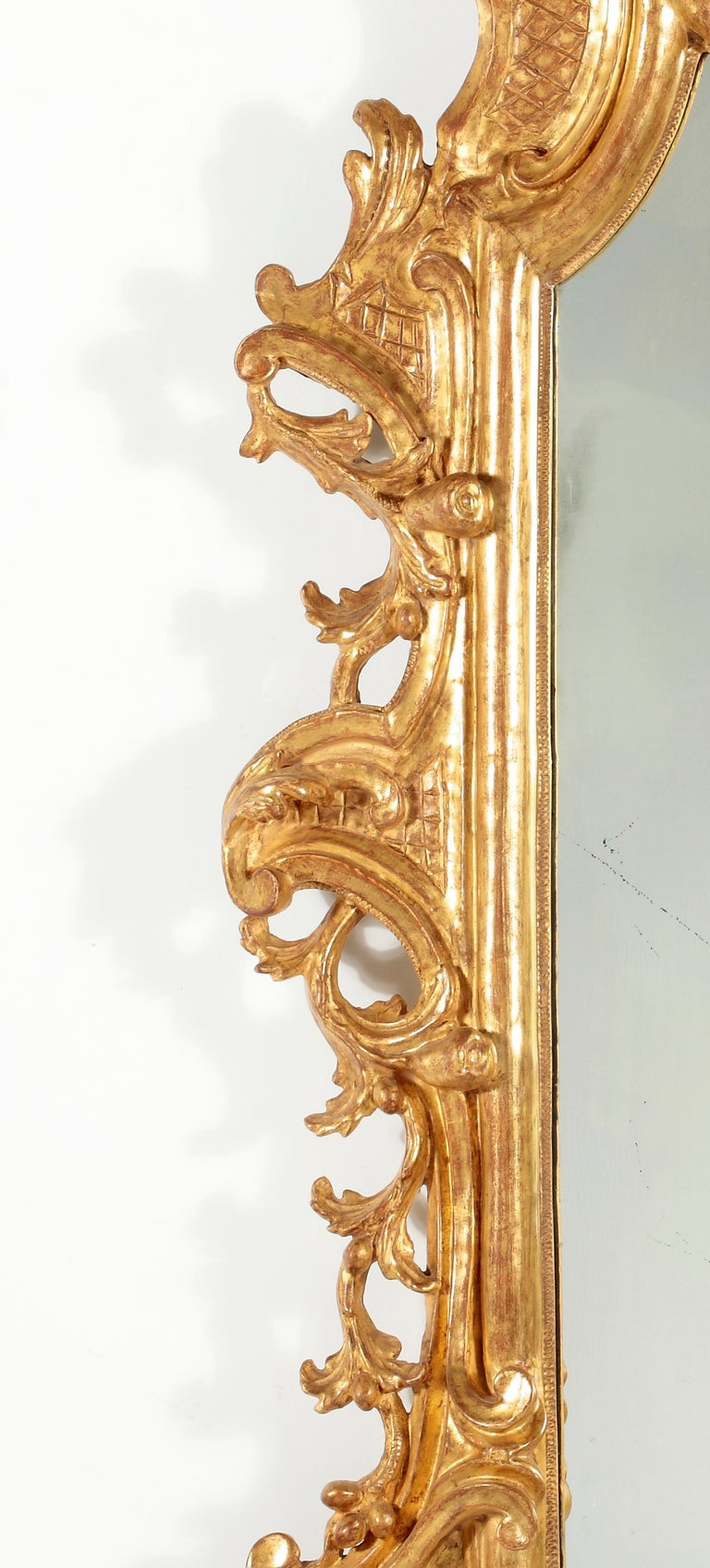 A Fine RococoI Giltwood Mirror, Italy In Excellent Condition For Sale In Sheffield, MA