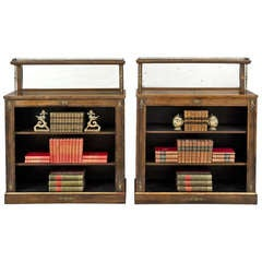 English Pair of Regency Period Rosewood Bookcases, circa 1820