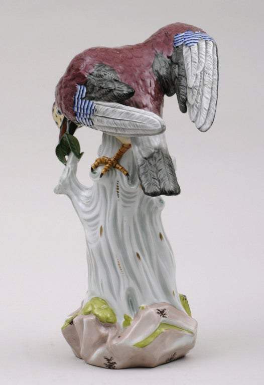 German Dresden Porcelain Bird For Sale