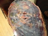 Arizona Petrified Wood Table With Artisan Made Base image 2