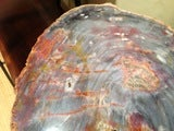 Arizona Petrified Wood Table With Artisan Made Base image 3