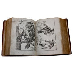 Rare 1673 medical, philosophical book paranormal discussion
