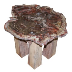 Arizona petrified wood table with new artisan base.