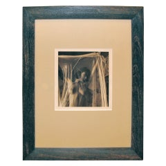 Sepia Toned Photograph of a Nude Woman in Mesh
