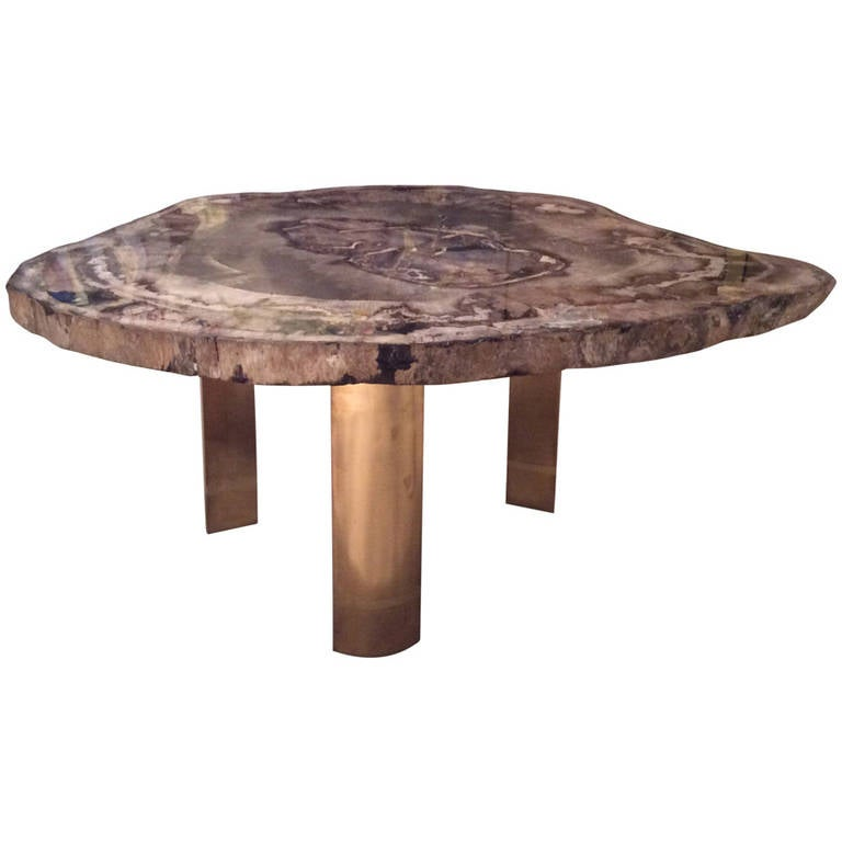 Karl Springer Petrified Wood Table With Brass Legs At 1stdibs