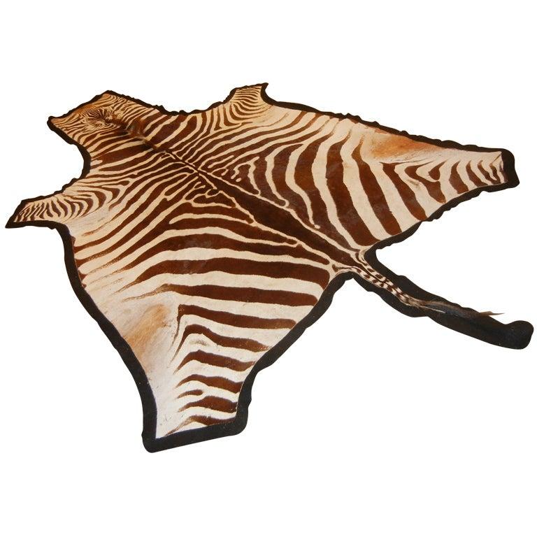 Chocolate Brown And Cream 10ft Zebra Skin Hide Rug At 1stdibs