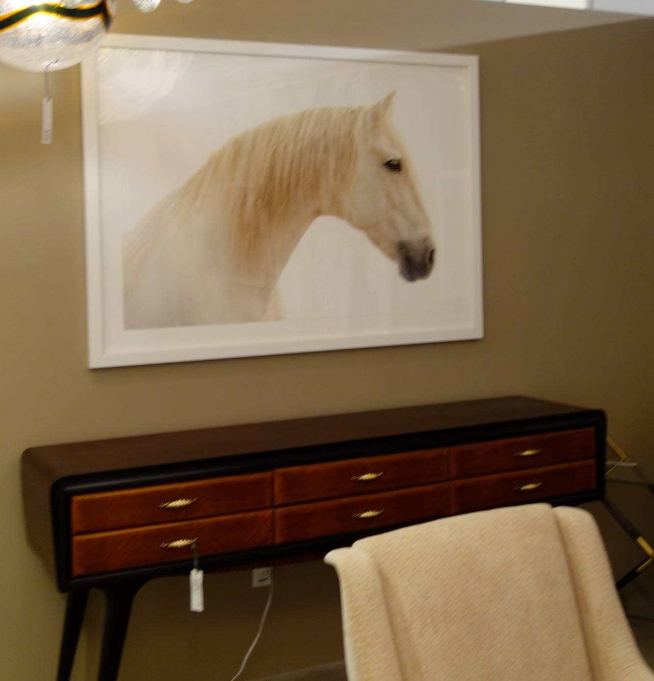 """Athansor,"" Horse Color White Framed Photograph by Lisa Houlgrave 2"