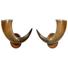 Pair of English Late 19th Century Horns with Silver Rim, Mounted on Wooden Plate