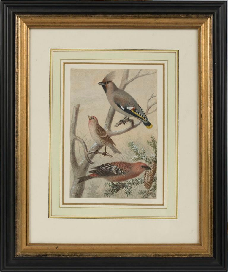 19th c. Pair of Watercolors, American School  In Excellent Condition For Sale In Boston, MA