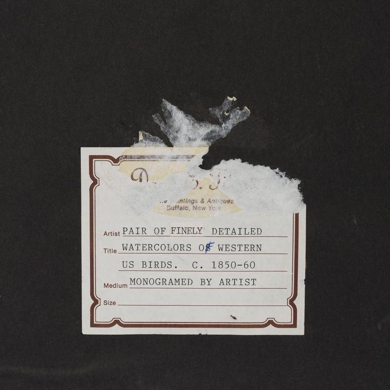 19th c. Pair of Watercolors, American School  For Sale 1