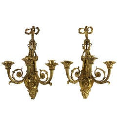 Rare Pair of Louis XVI Style Gilt Bronze Three-Light Sconces