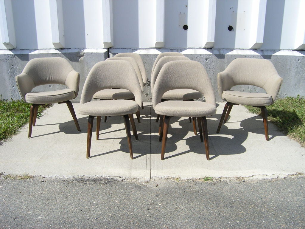 Set of eight dining chairs with wood legs by saarinen for