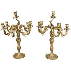 Pair of Louis XV Style Bronze Candelabras